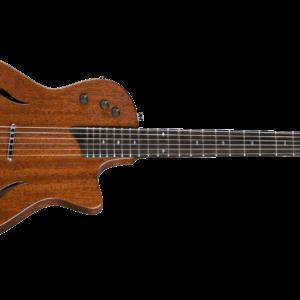 Taylor Guitars T5-z Classic