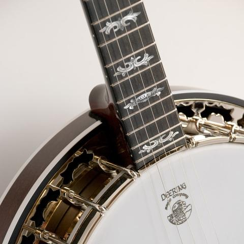Deering Banjo Eagle II neck and top